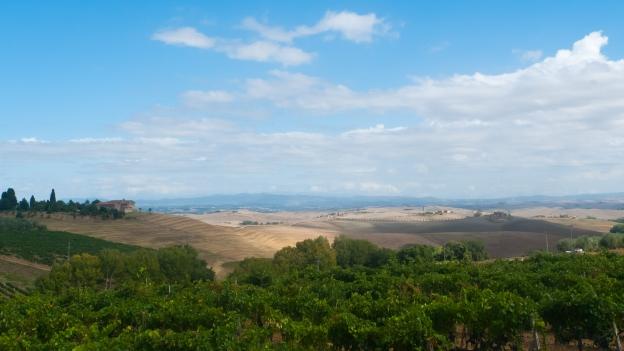 Grand Tour della Val di Merse - looking towards Siena