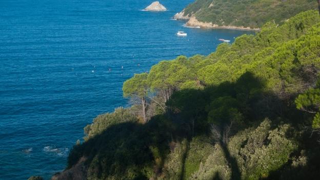 Elba coastline near Enfola