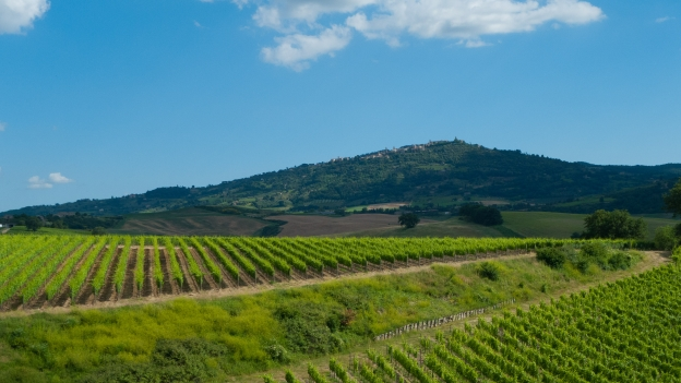 The Val d'Orcia near Montalcino