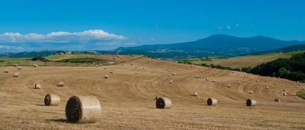 The Val d'Orcia near Montalcino (view from the Ciclovia dei Pellegrini/EV5)