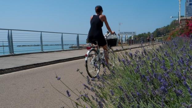 The Cycling Riviera cycleway - near Sanremo (Liguria)