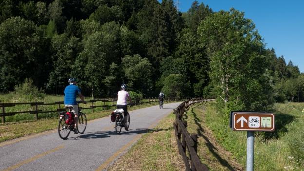 Cyclists on the Ciclovia Alpe-Adria Radweg (FVG1) near Tarvisio