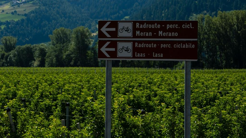 Signs on the Vinschgau Radweg/Via Claudia near Laas (Lasa)