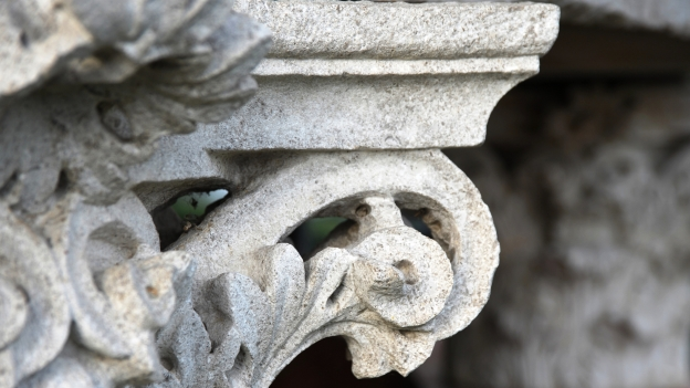 Detail of a the capital of a roman column found in the Altino archeological site